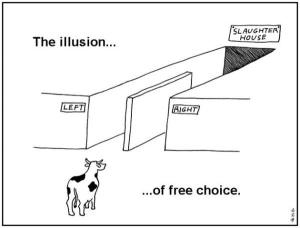 freewill-illusion