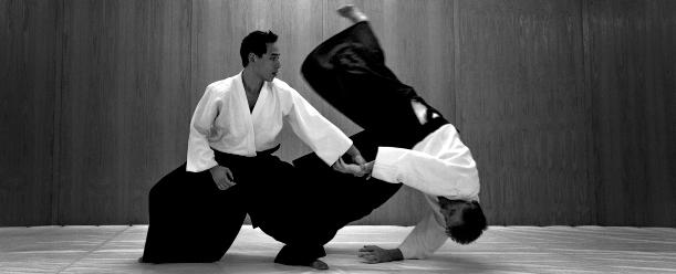 Aikido-Image-Source-Siamstarmma